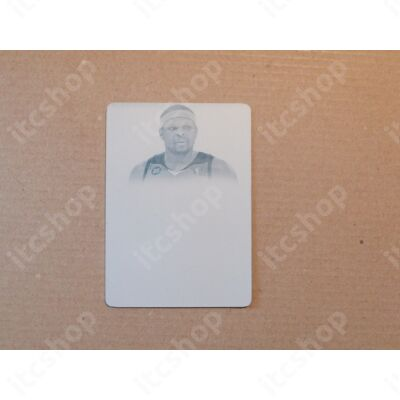 2012-13 Panini Flawless Signatures Platinum Inscriptions Cyan Plate #21 Zach Randolph 1/1